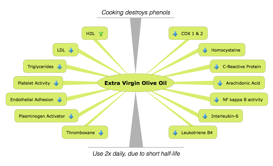 Infographic showing the molecular breakdown of Extra Virgin Olive Oil